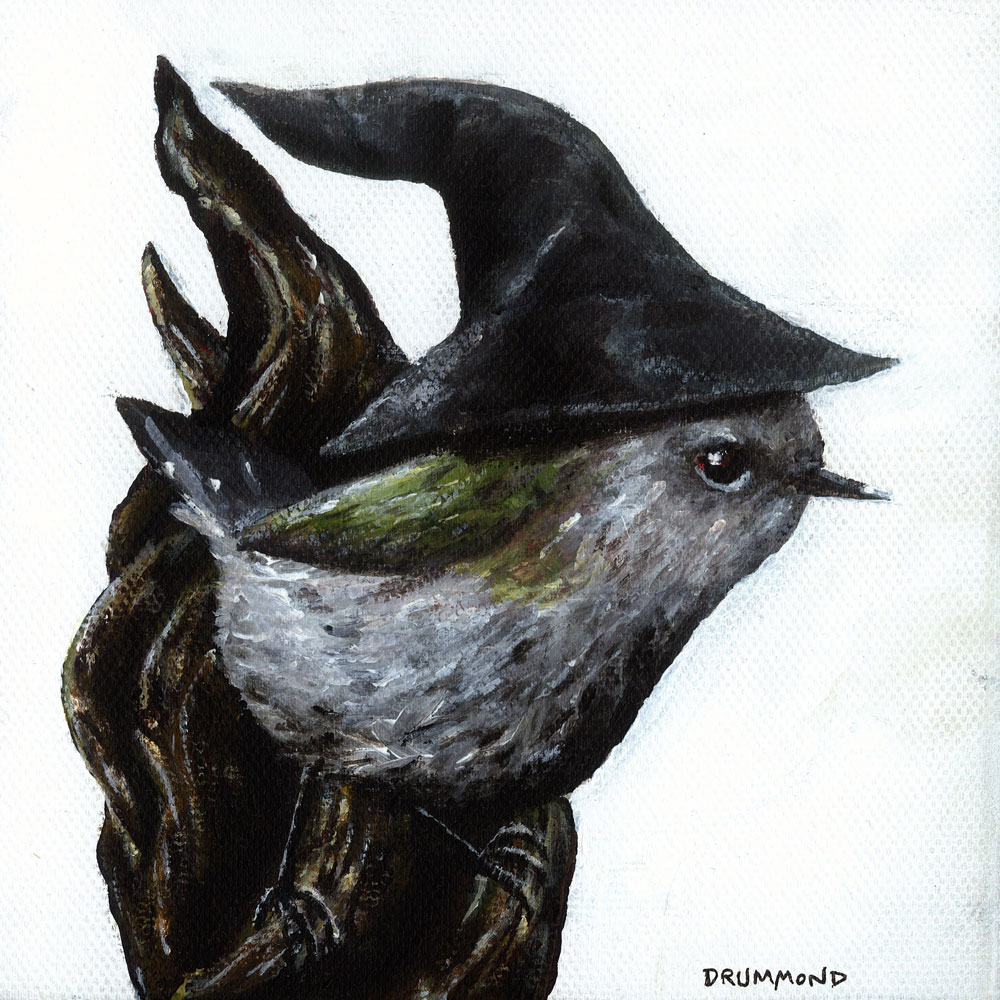 gandalf-the-grey-warbler-web